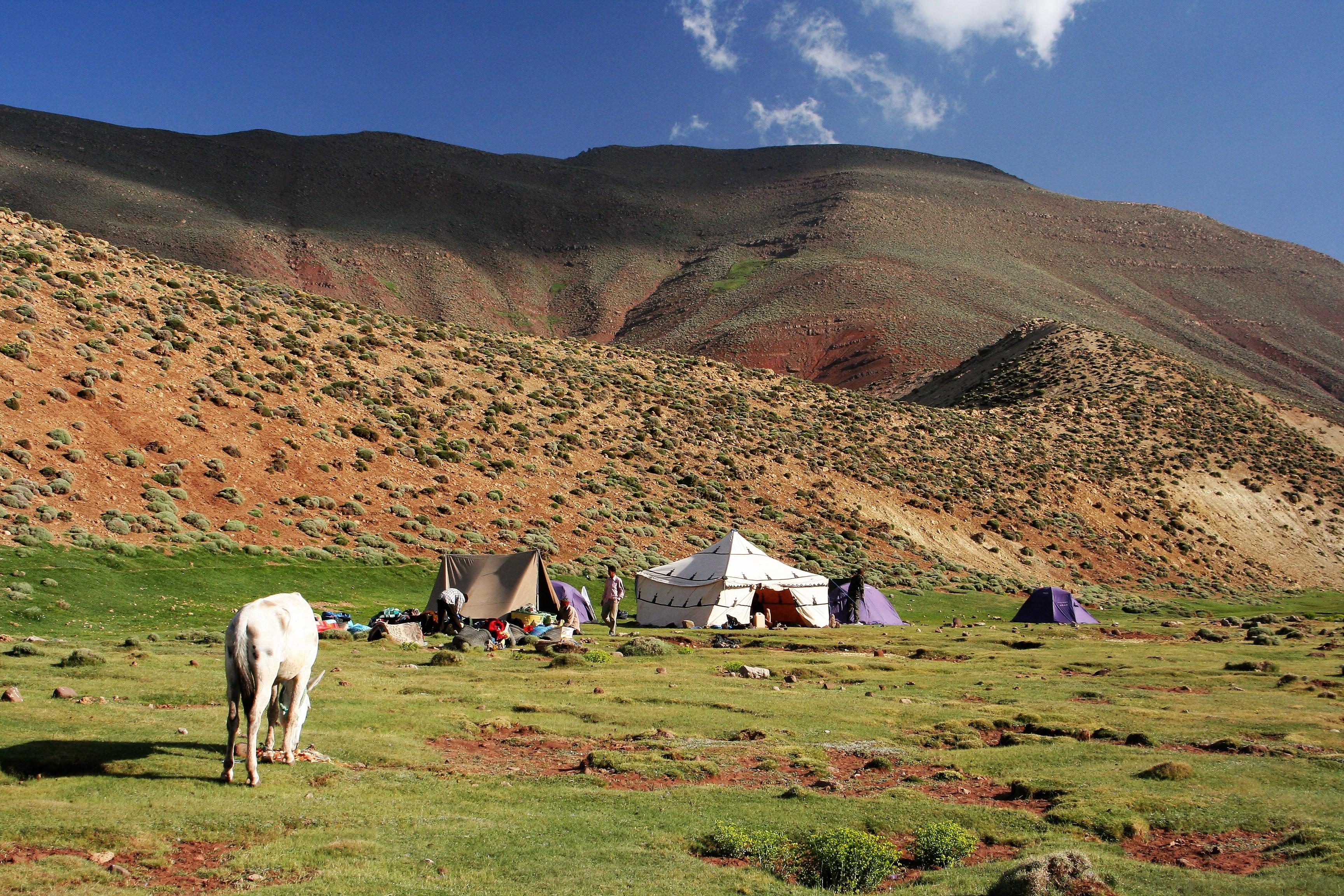 maroko 228